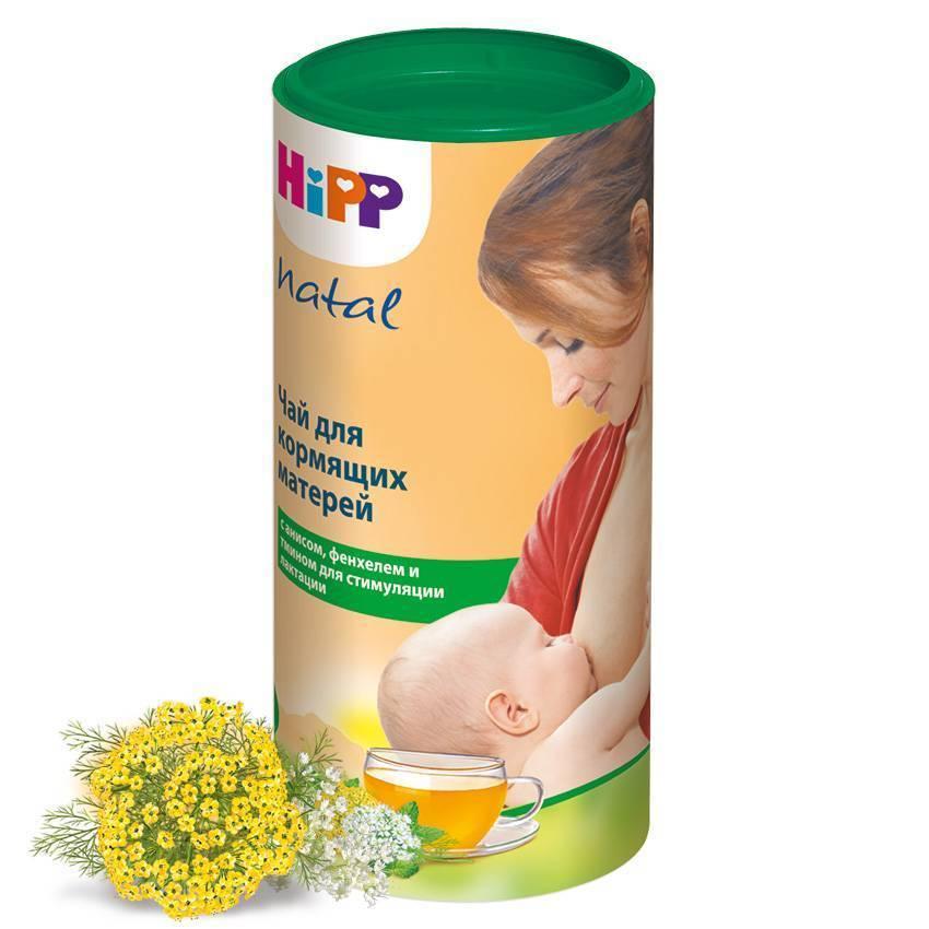 Целебное растение крапива при грудном вскармливании — нюансы применения для лечения и рецепты вкусных блюд