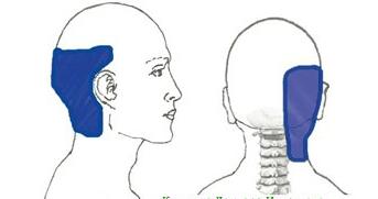 У ребенка болит шея и голова