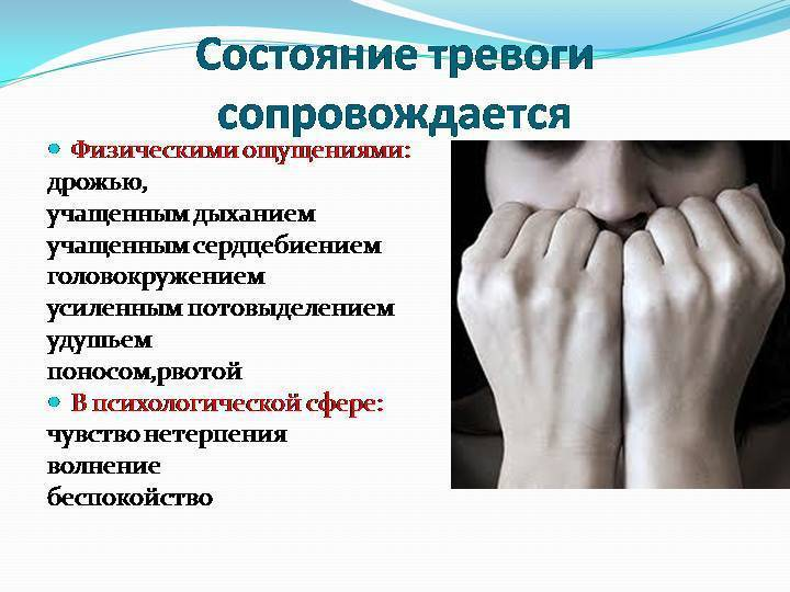 Плохие сны при беременности: почему постоянно снятся комары, как избавиться от тревоги после сна и что обозначает если во сне женщина теряет ребенка