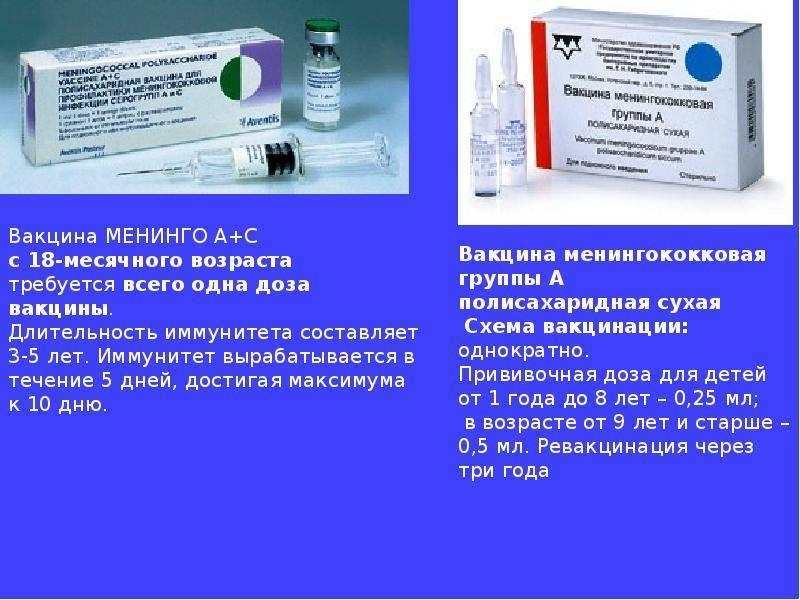 Комаровский прививка от менингококковой инфекции