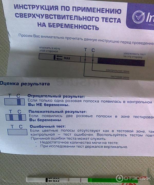 Виды и особенности тестов на беременность марки evitest