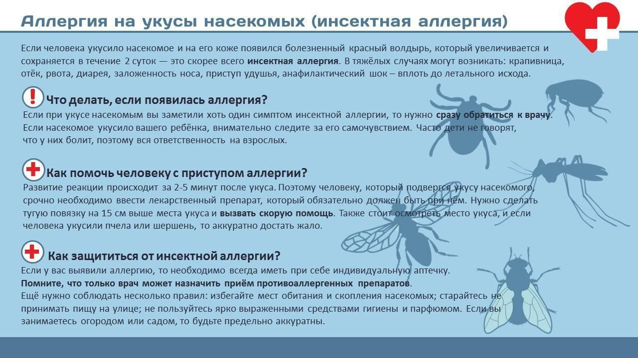 Аллергия на комаров у детей • аллергия и аллергические реакции