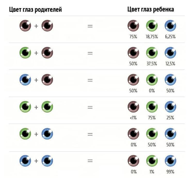 Цвет глаз у ребенка от родителей: таблица вероятности карего, голубого и зеленого оттенка | диагностика | vpolozhenii.com
