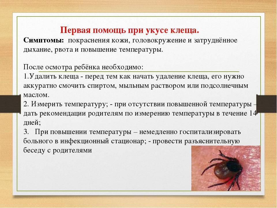 Симптомы укуса клеща у ребенка и последствия