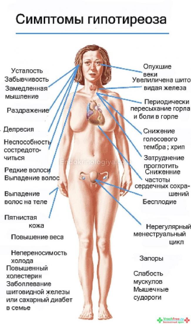 Боль при овуляции симптомы и признаки