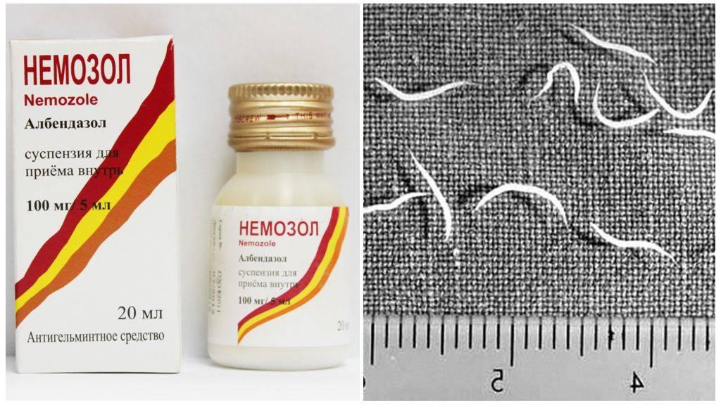 Лекарства от остриц (энтеробиоза) для взрослых и детей