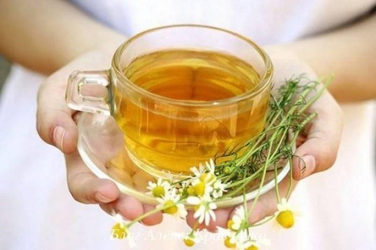 Травы от кашля – лечение и профилактика болезней
