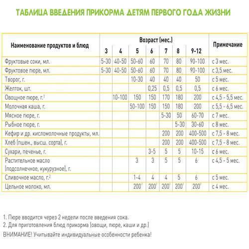 Педагогический прикорм: правила, сроки иособенности