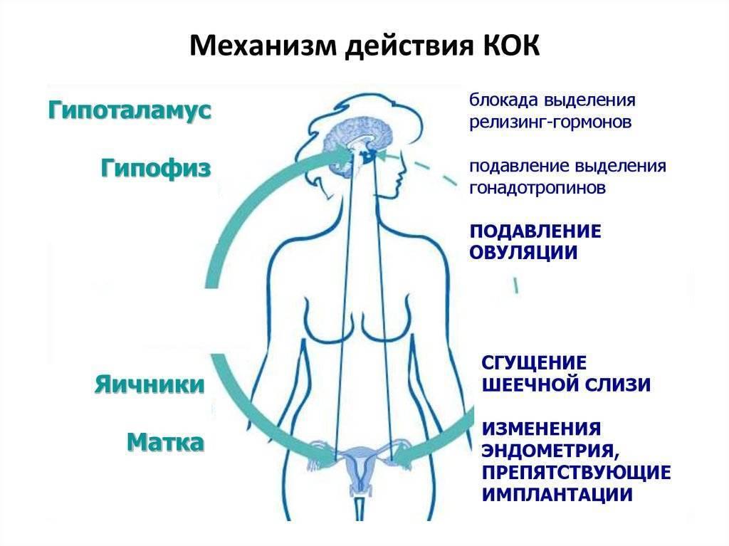 При каких заболеваниях назначают гормоны. побочные реакции гормональных препаратов