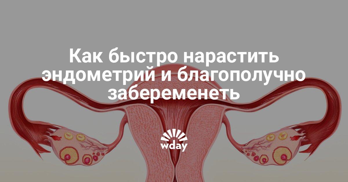 Беременность при гиперплазии эндометрия – возможно ли это?