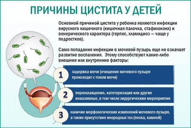 Цистит у ребенка 2-5 лет: симптомы, лечение антибиотиками
