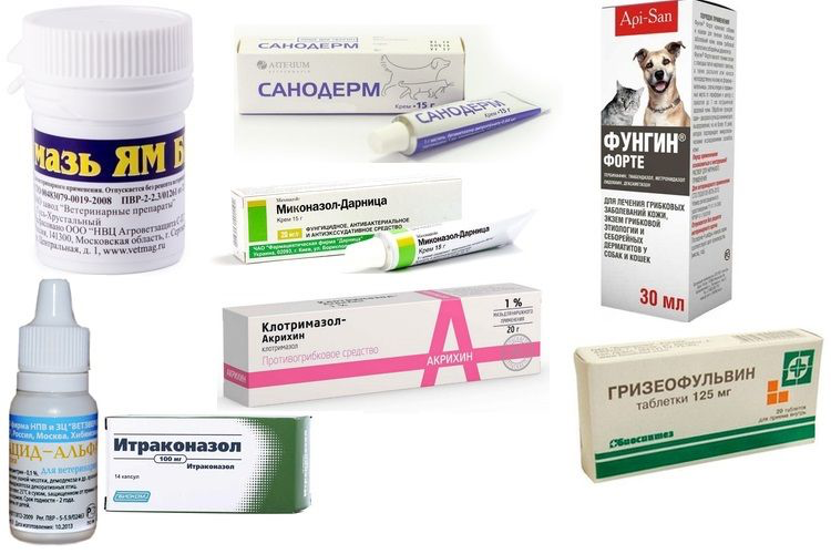 Таблетки от лишая: хорошие средства для лечения, противовирусные препараты и антибиотики