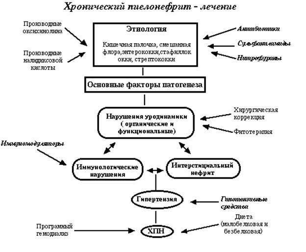 Профилактика пиелонефрита у детей
