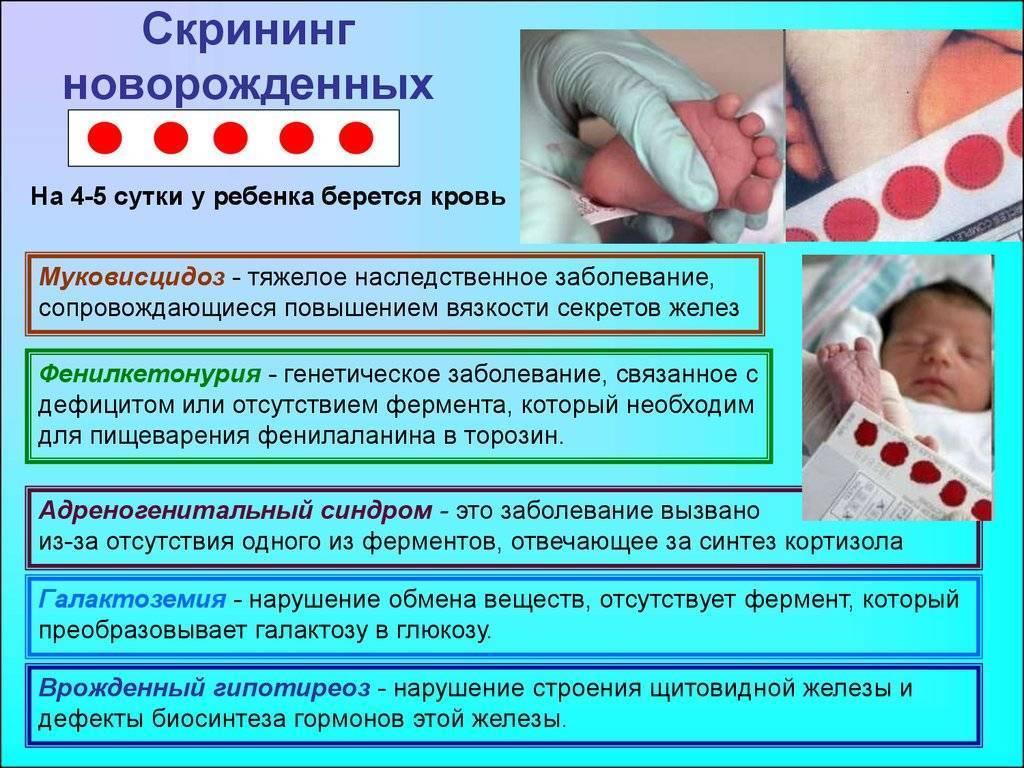 Анализ из пятки у новорожденных на что берут: как делают скрининг
