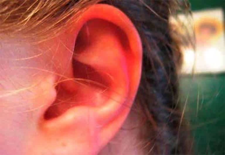 У ребенка покраснели опухли и чешутся уши. что делать, если у ребенка опухло и покраснело ухо, причины такой реакции