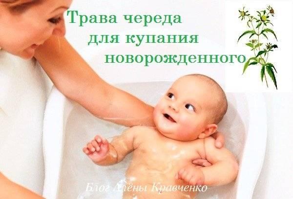 Как заварить череду для купания новорождённого, рекомендации