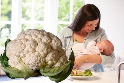 Польза брокколи при грудном вскармливании и рецепты с капустой для кормящих мам