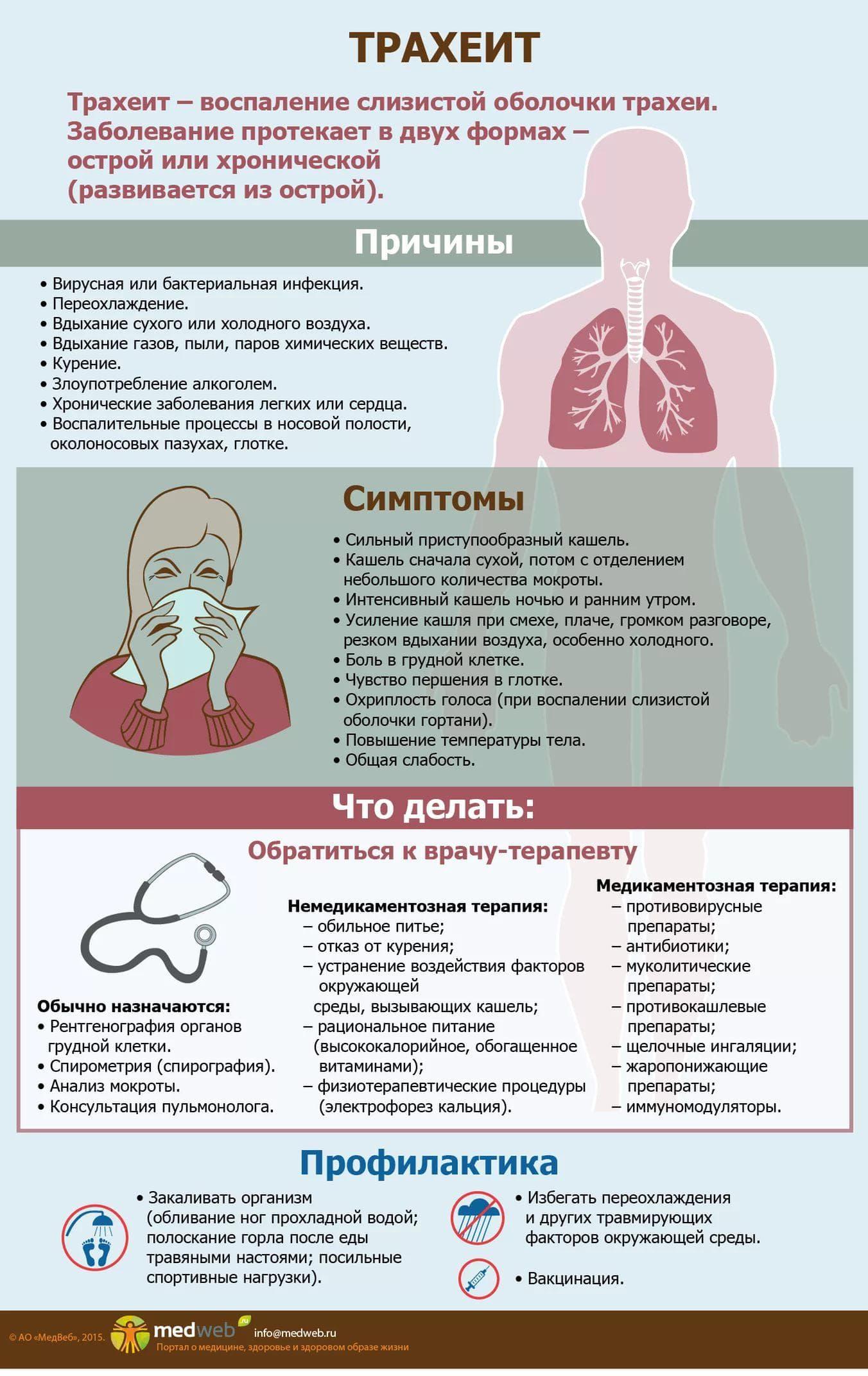 Хронический трахеобронхит – симптомы, лечение и профилактика