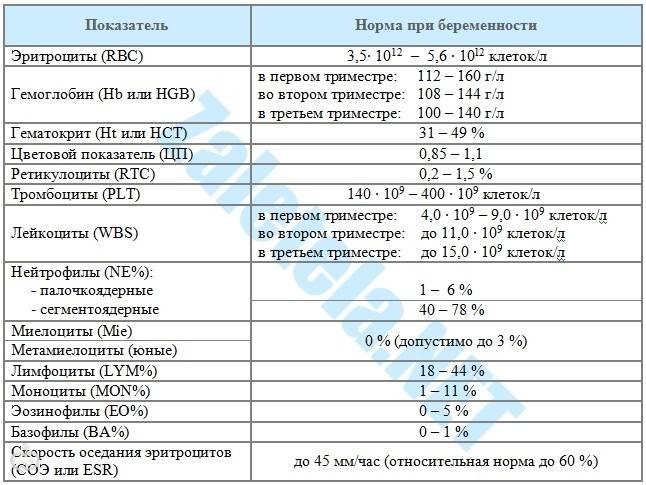 Фибриноген при беременности: норма в третьем, втором и первом триместрах у беременных по неделям, таблица норм и причины отклонений
