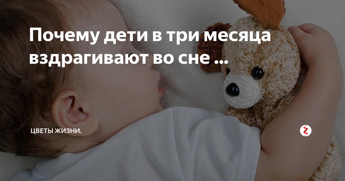 Ребенок резко вздрагивает во сне. почему новорожденный ребенок вздрагивает во сне, стоит ли беспокоиться