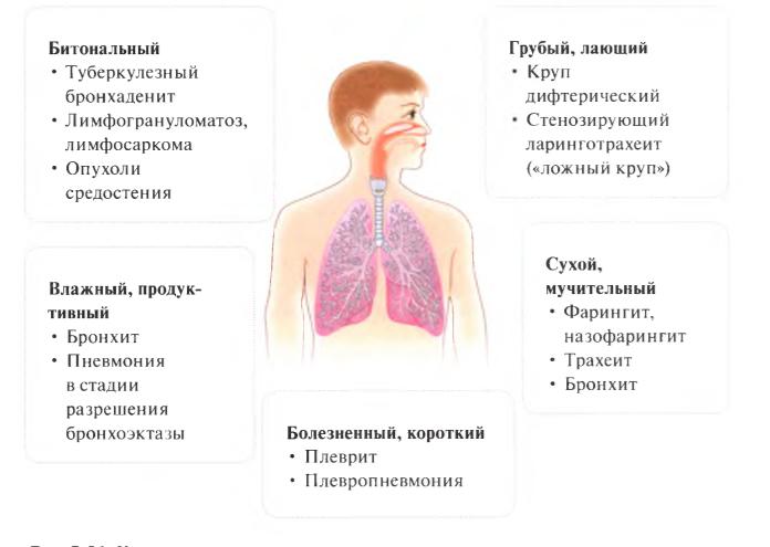 Трахеит у детей. причины, симптомы, лечение и профилактика трахеита   здоровье детей