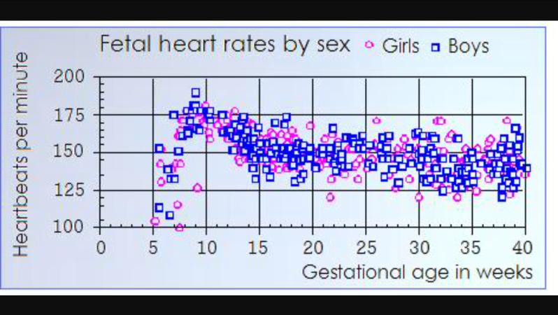 Определение пола ребенка по его сердцебиению — заболевания сердца
