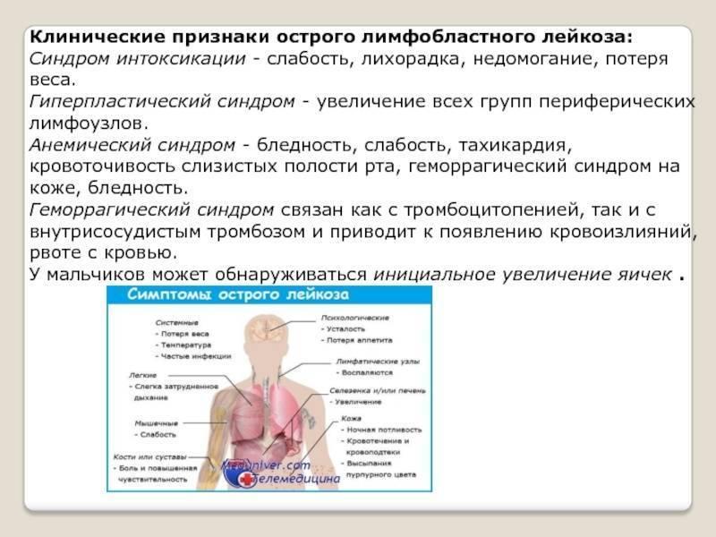 Острый лимфобластный лейкоз у детей - симптомы, лечение и прочие нюансы