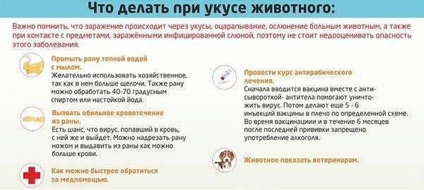 Симптомы столбняка у человека , после укуса собаки