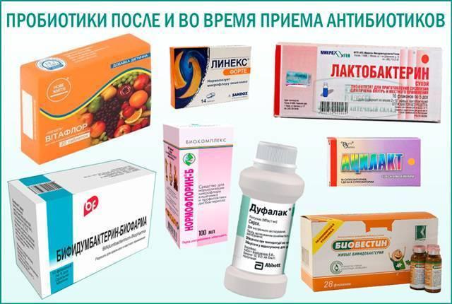 Лечение дисбактериоза у ребенка после антибиотиков - врачебная тайна