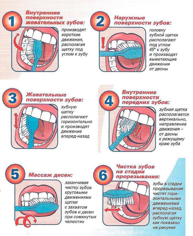 Как научить ребенка чистить зубы в 1,5 года, 2 - 3 года - методика