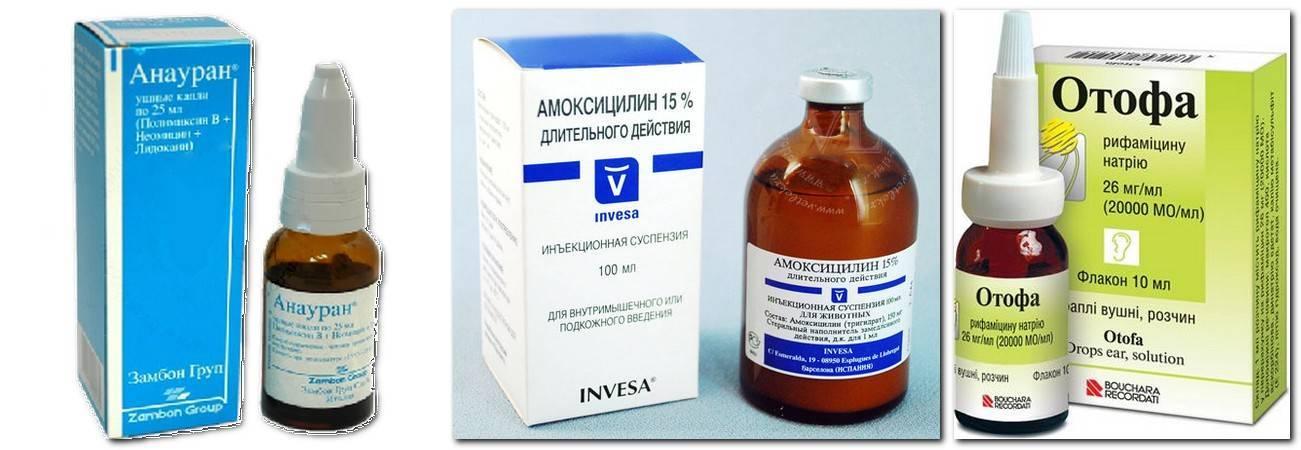 Антибиотики при отите, список лучших антибиотиков при отите у взрослых и детей