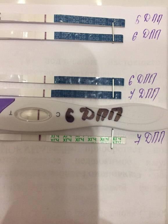 После переноса эмбрионов тянет живот: причины и методы устранения