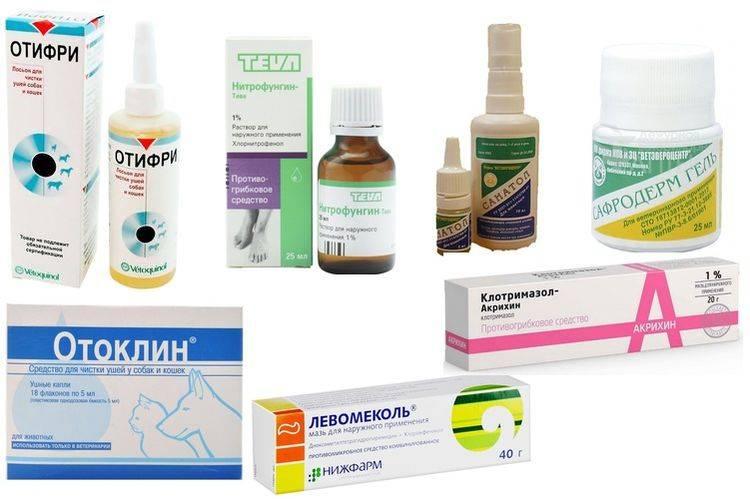 Антибиотики при отите у детей с 2 лет: противопоказания