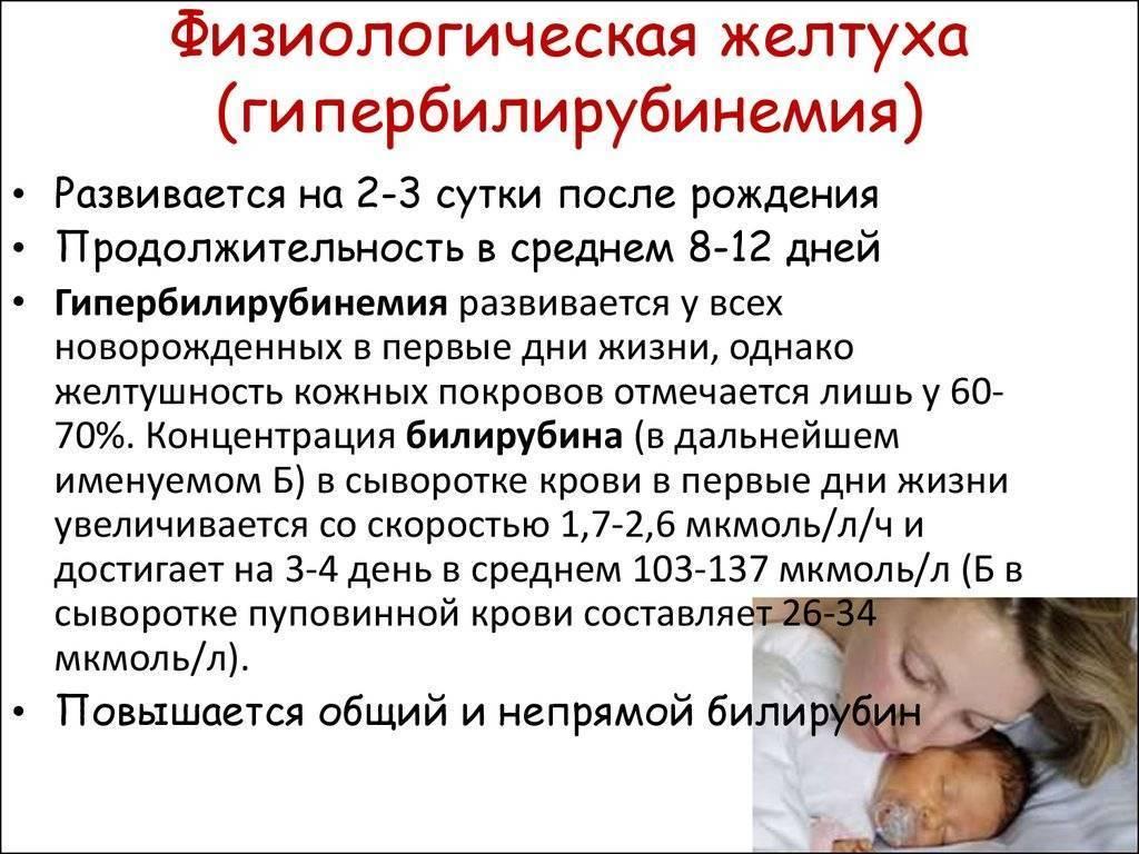 Затяжная физиологическая желтуха у новорожденных: причины, признаки, последствия и лечение неонатальной желтухи
