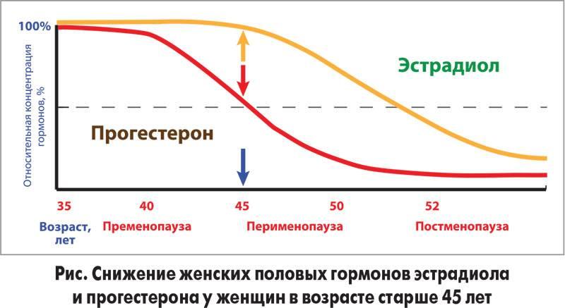 Норма прогестерона у мужчин: что это за гормон, почему он повышается или понижается и что делать?