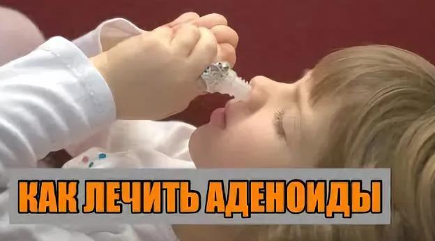 Лечение аденоидов у детей народными средствами: алоэ, облепиховое масло, прополис, каланхоэ и другие рецепты