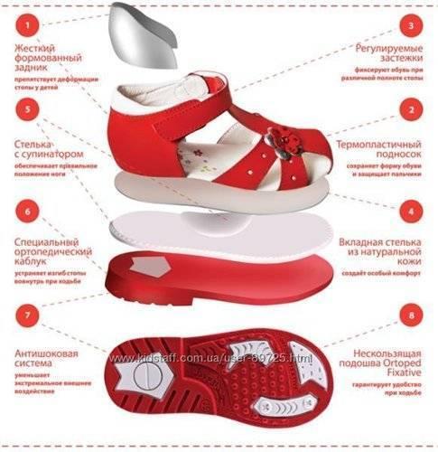 Первая обувь для начинающих ходить
