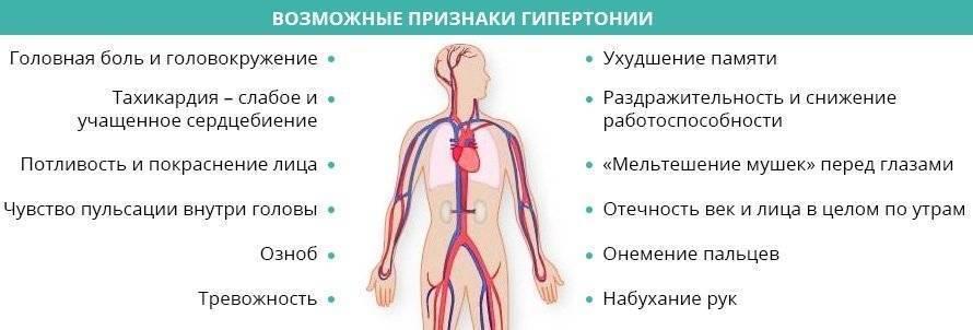 Причины, симптомы и лечение низкого артериального давления. народные и метикаментозные средства для повышения ад