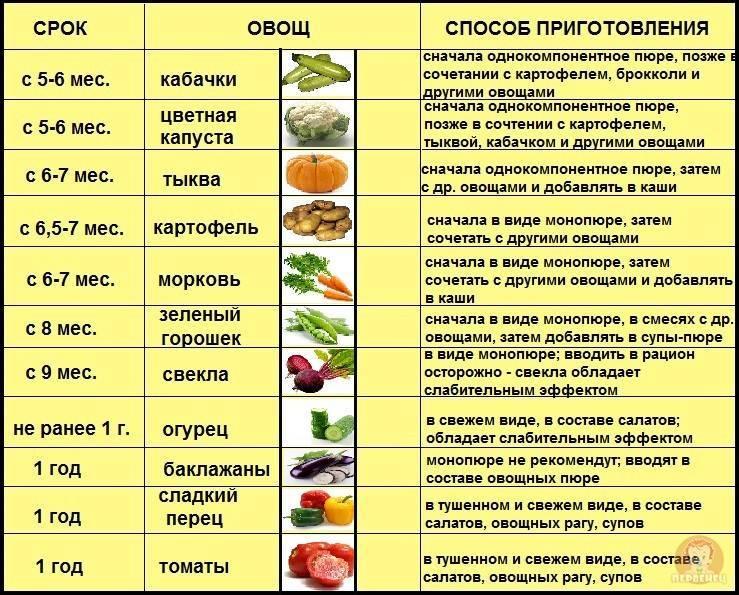 Овощи для первого прикорма | уроки для мам