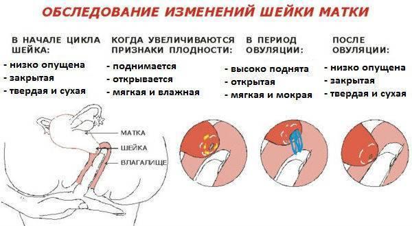 Боли при месячных: основные причины и способы снять боль