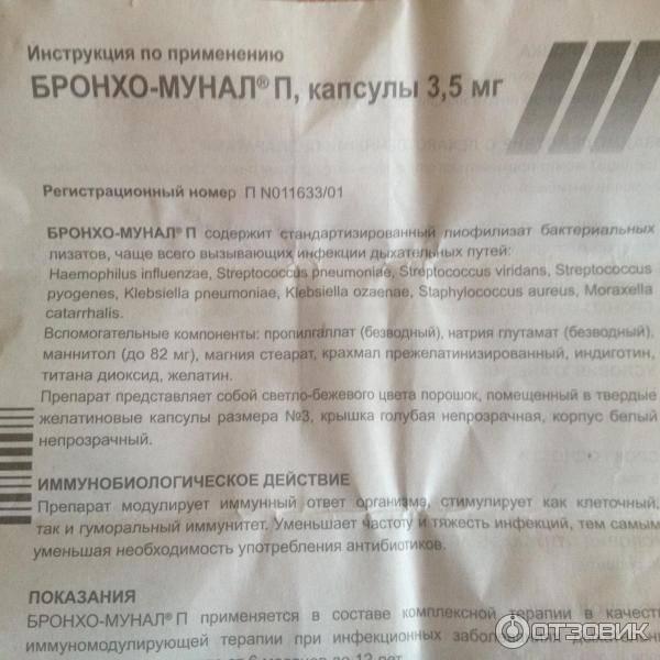 Бронхо-мунал п — инструкция по применению, описание, вопросы по препарату