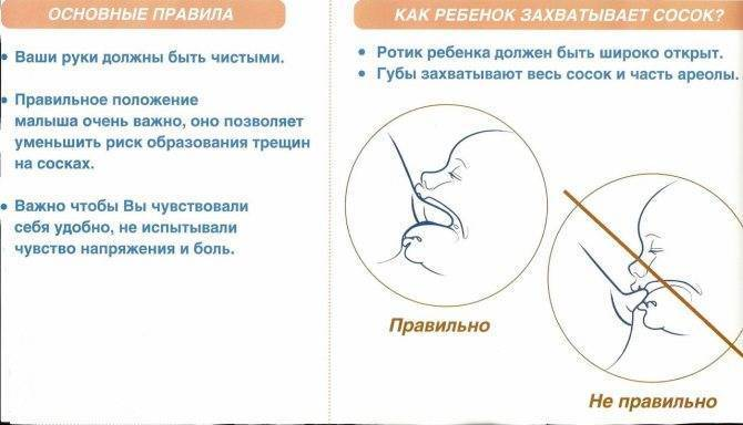 Повышенное газообразование в кишечнике у грудничка