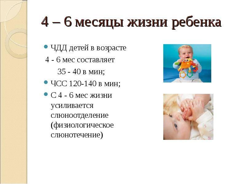 Ребенок в 1 год и 4 месяца: что должен уметь, развитие, рост и вес, питание