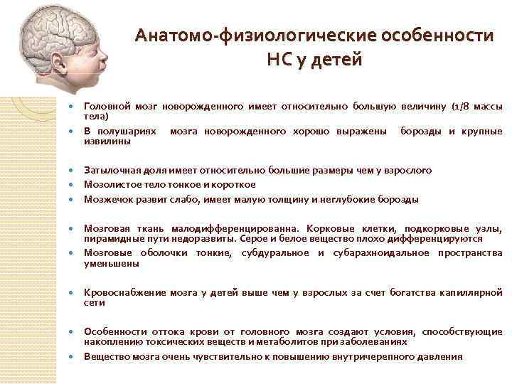 Развитие нервной системы у ребенка1. последствия и лечение нейрофизиологической незрелости коры головного мозга у новорожденного ребенка