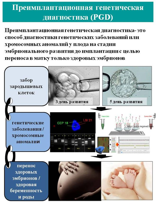 Предимплантационная генетическая диагностика - репродуктивные технологии - babyplan