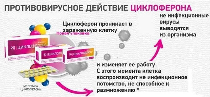Таблетки «циклоферон» для детей: инструкция по применению
