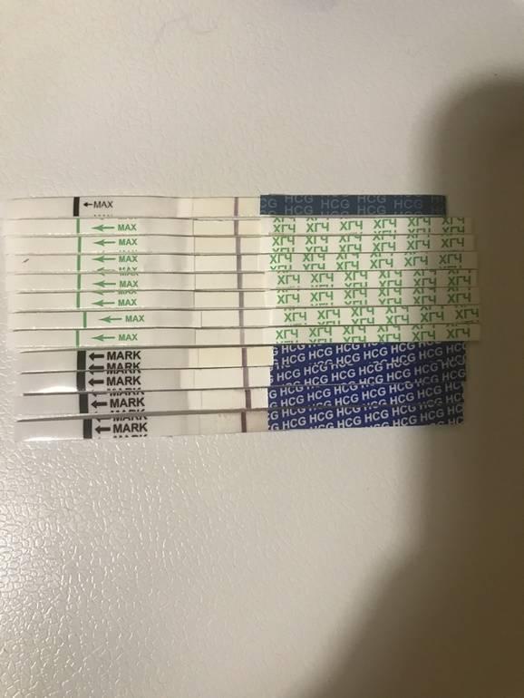 Задержка месячных 10 дней и тянущая боль в пояснице — тест отрицательный, болит низ живота при задержке менструации