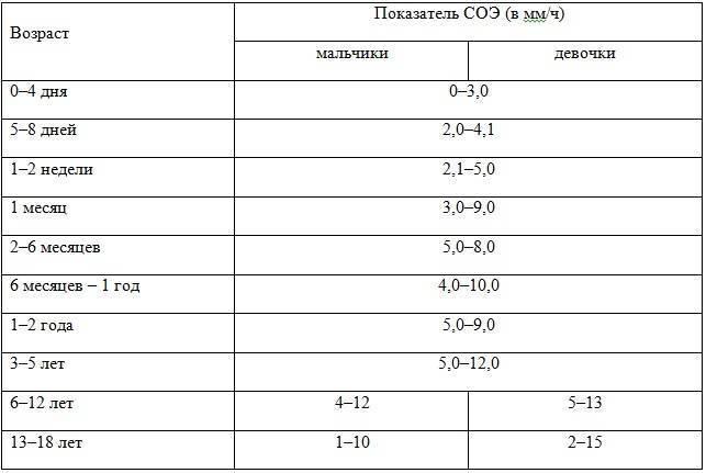 Ширина распределения эритроцитов в анализе крови