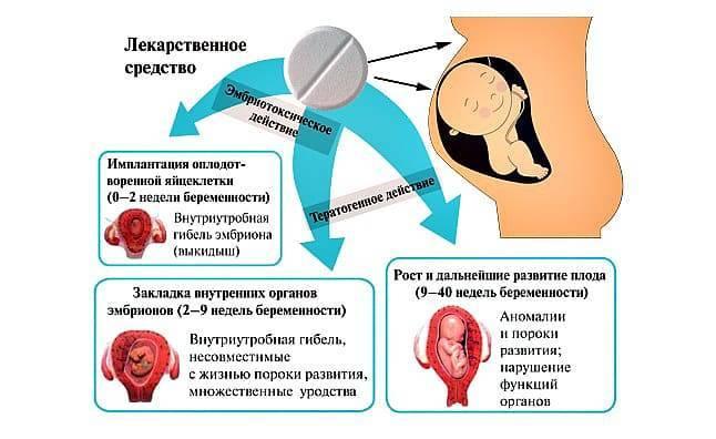Влияние антибиотиков на сперму и зачатие ребенка