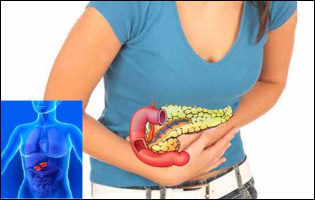 Поджелудочная железа увеличенная: причины и лечение патологии.
